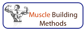 Muscle Building Methods